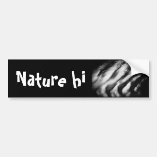 fallen vultures bumper sticker