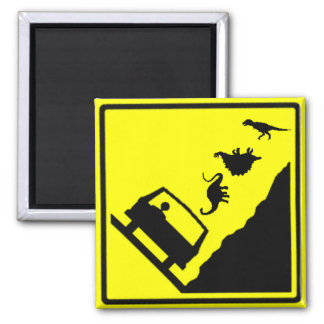 Falling Dinosaurs Zone Highway Sign Magnet