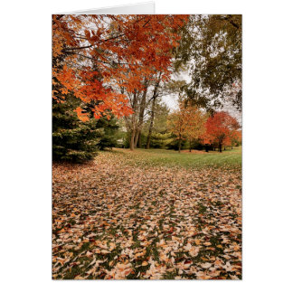Falling for Iowa Blank Note Card