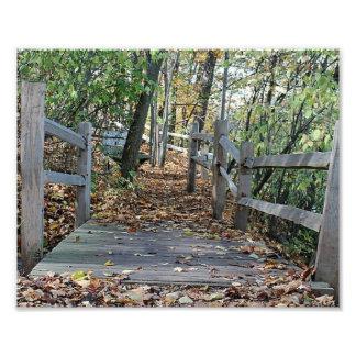 Falling into Place - Autumn Wooden Bridge Picture Photo Print