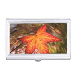 Falling Leaf from a tree in autumn Business Card Holder