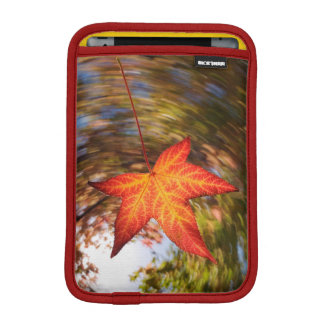 Falling Leaf from a tree in autumn iPad Mini Sleeve
