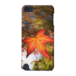Falling Leaf from a tree in autumn iPod Touch (5th Generation) Cases