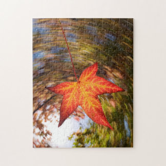 Falling Leaf from a tree in autumn Jigsaw Puzzle