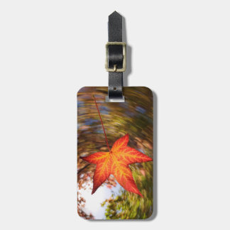 Falling Leaf from a tree in autumn Luggage Tag