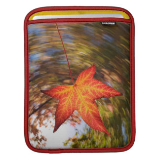 Falling Leaf from a tree in autumn Sleeves For iPads