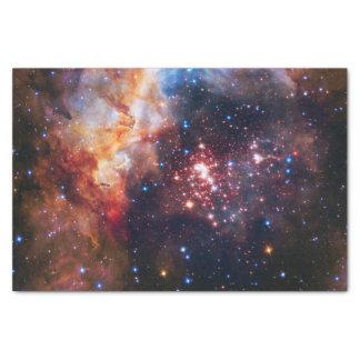 Falln Westerlund Star Field Tissue Paper