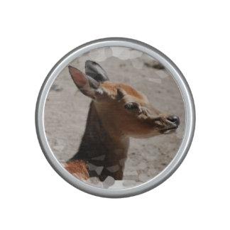 fallow-deer-15 bluetooth speaker