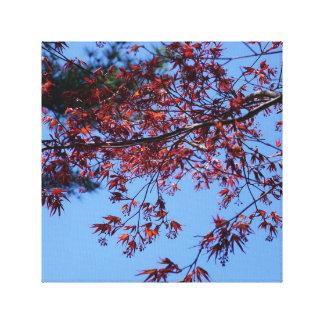 Fall's Beauty Canvas Print