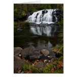 Falls In Autumn Greeting Cards
