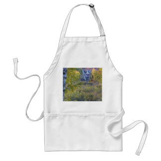 Falls in the Distance Standard Apron