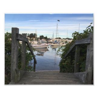 Falmouth Harbour Cape Cod Photo Print