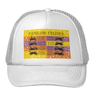 Familiar Felines in Yellow, Orange, and Purple Cap