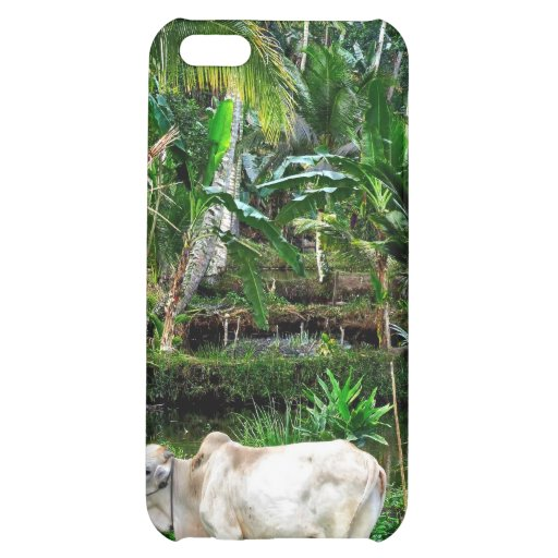Families buy their farms plot at a time so their p iPhone 5C case