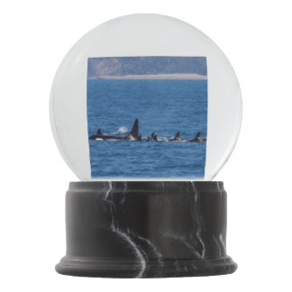 Families Stick Together Snow Globes