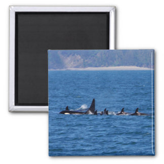 Families Stick Together Square Magnet