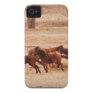 Family Case-Mate iPhone 4 Cases