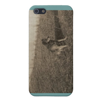 Family Dog Cover For iPhone 5