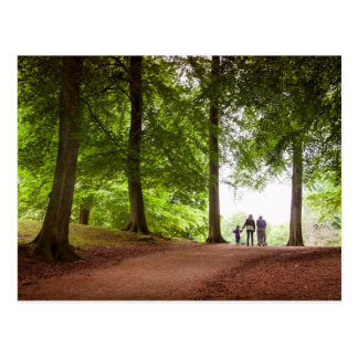 Family Forest Walk Postcard