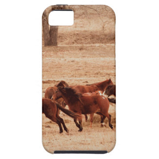 Family iPhone 5 Covers