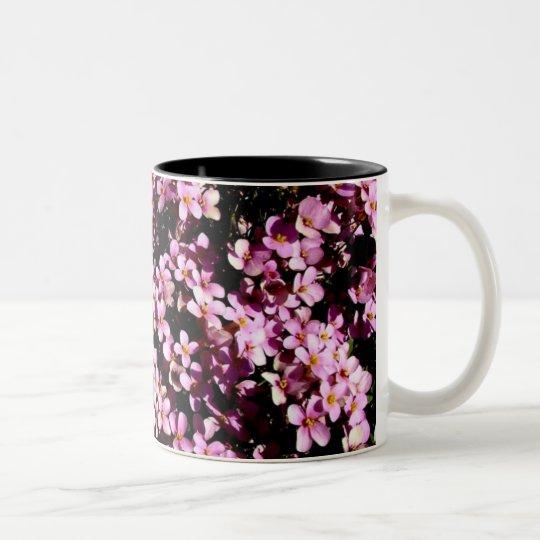 Family mug set