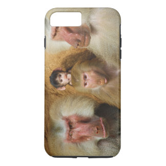 Family of Baboons Papio Hamadryas Cologne Zoo iPhone 7 Plus Case
