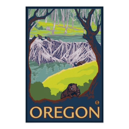 Family of Beavers making a Dam - Oregon Posters