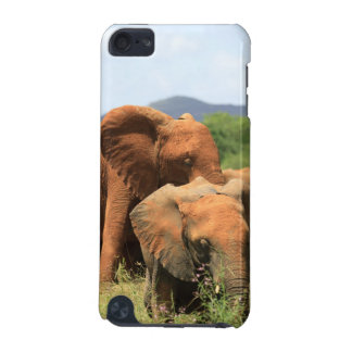 Family of elephants iPod touch 5G case