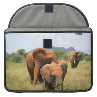 Family of elephants sleeve for MacBook pro