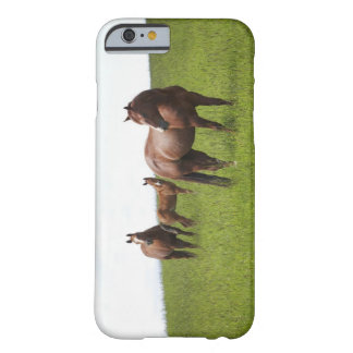 Family of horse in field barely there iPhone 6 case