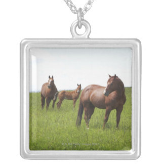 Family of horse in field silver plated necklace