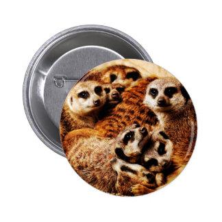 Family of Meerkats 6 Cm Round Badge