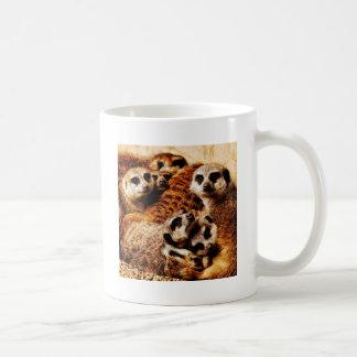 Family of Meerkats Basic White Mug
