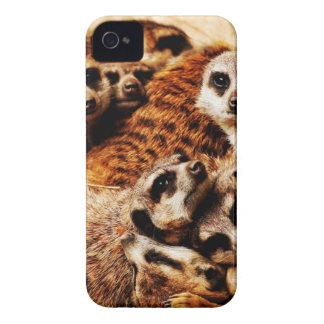 Family of Meerkats iPhone 4 Cases