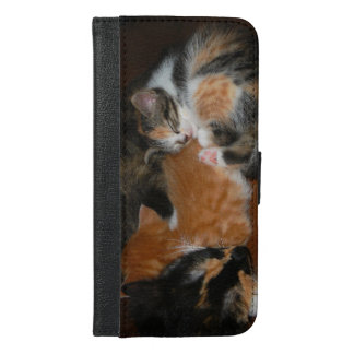 Family of sleepy kittens iPhone 6/6s plus wallet case
