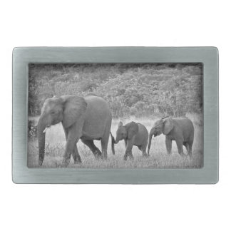 Family of South African elephants Rectangular Belt Buckle