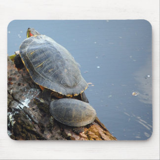 family of turtles mouse pad