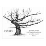 FAMILY: Pencil Art: Gnarly Old Tree: Family Ties Post Cards