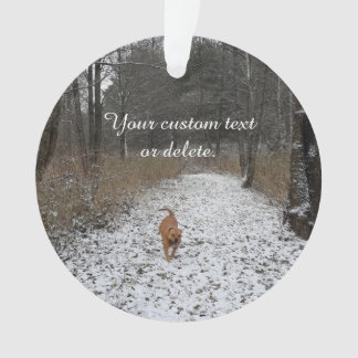 Family Pet - Create your own photo Ornament