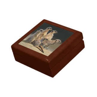 Family Portrait Gift Box