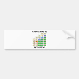 Family Relationships In Perspective (Reunion) Bumper Stickers