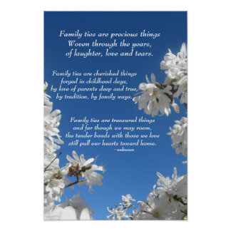 Family Ties Magnolia Poster
