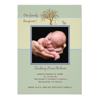 Family Tree Blue - Photo Birth Announcement
