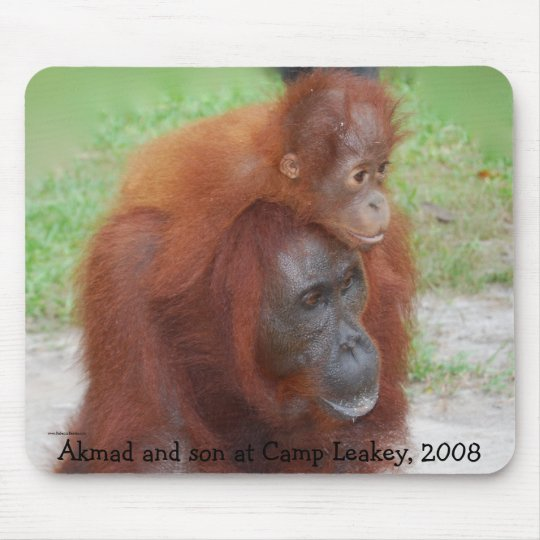 Famous Orangutan Mother Mouse Pad