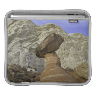 Fanciful toadstool shape of eroded red and white iPad sleeve