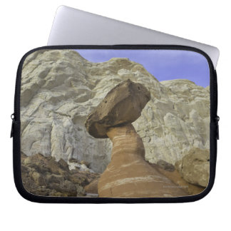 Fanciful toadstool shape of eroded red and white laptop sleeve