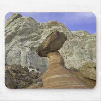 Fanciful toadstool shape of eroded red and white mouse mat
