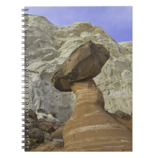 Fanciful toadstool shape of eroded red and white notebooks