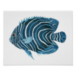 Fanciful Tropical Coral Reef Blue Fish Art Print
