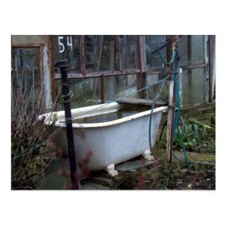 Fancy a bath? post cards